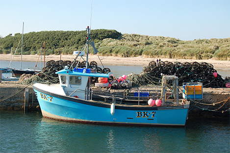 A fishing boat in the harbour