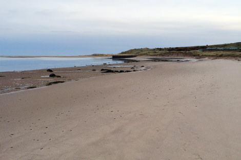The beach at Budle Water