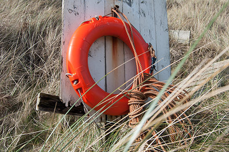A lifebuoy nestled in the grasses by the beach